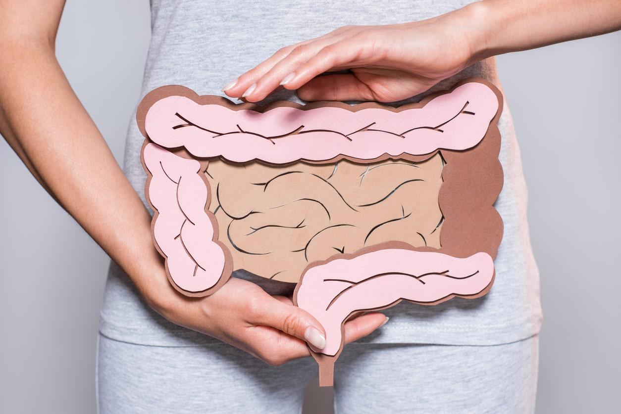 saúde do intestimo